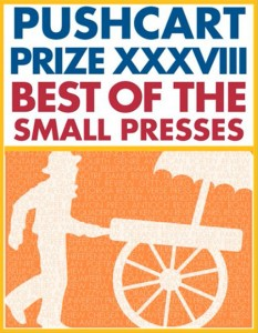Pushcart-Prize-image
